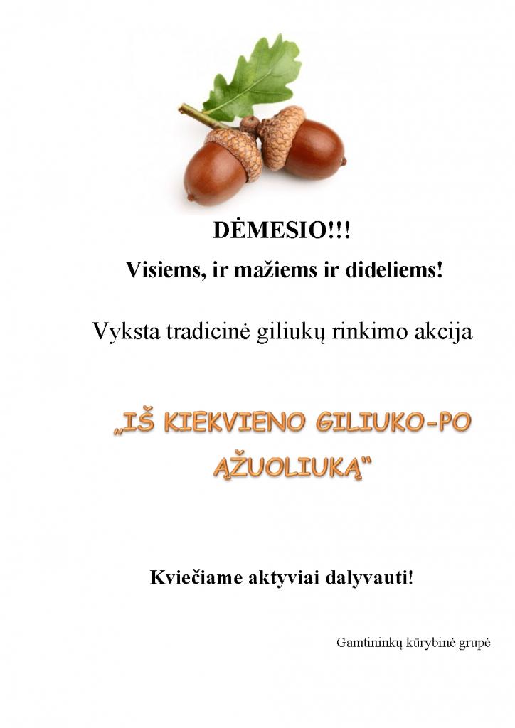 DĖMESIO