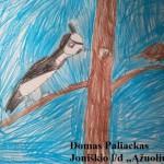 Domo Paliacko paukštis